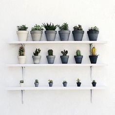 100 Beautiful DIY Pots And Container Gardening Ideas (39)