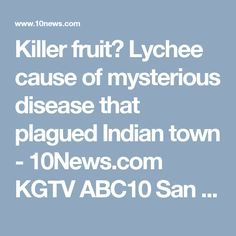 Killer fruit? Lychee cause of mysterious disease that plagued Indian town - 10News.com KGTV ABC10 San Diego