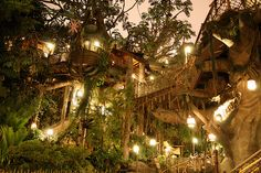 A giant network of treehouses in England
