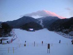 무주 리조트   - 한국 겨울 레저 관광