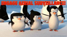 Penguins of Madagascar Photo: Engage Aerial Surveillance! Penguins Of Madagascar, Moving Pictures, Dreamworks, Short Film, Wonders Of The World, Pin Up, Funny Gifs, The Originals, Bbc