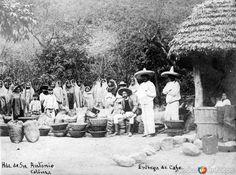 EntregadecaféenlaHaciendadeSanAntonio, Municipio de Comala, Colima (ca. 1905).
