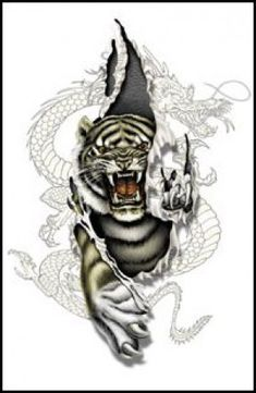 white tiger tattoo White Tiger Tattoo White Tiger Tattoo, Cat Tattoo Designs, Sexy Tattoos, Tatting, Arms, Brooch, Ink, White Tigers, Tattoo Ideas