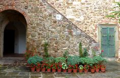 Tiny garden of flower pots in Montemerano Italy