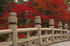 Entsu-kyo bridge during autumn season in Higashiyama, that leads to the Otani-Honbyo Mausoleum in Kyoto!