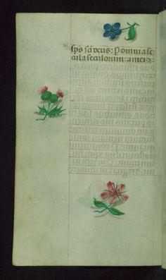 https://flic.kr/p/CmnsR9 | Book of Hours, Marginalia, Walters Manuscript W.427, Folio 157v | This manuscript was created ca. 1500 in Bruges or Ghent,…