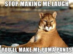 You'll make me puma pants... HA!