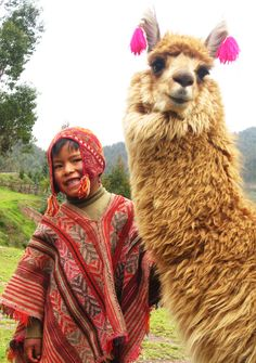Haha...Too Cute, a Big Smile from the Owner of a llama with Ear Tassles!! Peru