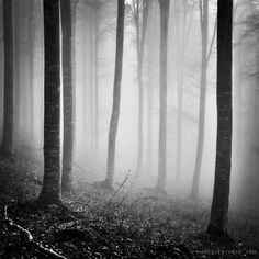 The dark side of me by Marco Venturin on 500px