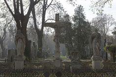 Zentralfriedhof, Vienna, Austria - T-Pool / STOCK4B/T-Pool / STOCK4B/Getty Images