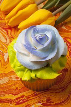 Blue rose cup cake Photograph  - Blue rose cup cake Fine Art Print