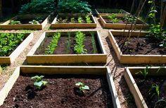 Garden-Layout-Ideas_52.jpg (444×288)