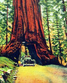vintage lodge posters | Vintage Yosemite