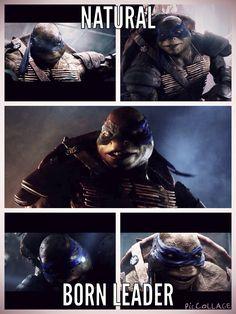 1000+ images about Ninja Turtles on Pinterest | TMNT ...