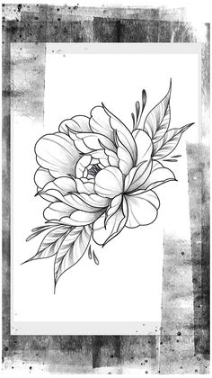 Peony Flower Tattoos, Flower Tattoo Drawings, Tattoo Sketches, Rose Tattoos, Flower Art, Flower Tattoo Stencils, Dragon Tattoos, Floral Tattoo Design, Flower Tattoo Designs