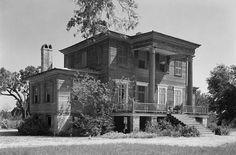 Brooklands Plantation in Charleston County, South Carolina.