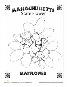 Illinois State Flag Coloring Page | An - CUB SCOUT /US color ...