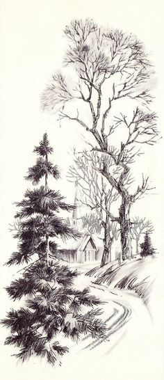 Wintery Trail - sketching trees. pencil or pen. good example of texture.