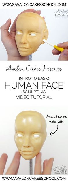 Learn how to sculpt a basic face with this step by step face sculpting tutorial. This is created for cake decorators using edible mediums BUT can be applied to many other art mediums (clay, etc)! (How To Make Clay Step By Step) Fondant Figures, Cake Decorating Techniques, Cake Decorating Tutorials, Modeling Chocolate Figures, Fondant People, Biscuit, Sculpting Tutorials, Fondant Animals, How To Make Clay