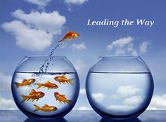 """A primer for new counselors on starting their own practice, from marketing and caseload size to enforcing a """"no show"""" policy. School Leadership, Leadership Quotes, Educational Leadership, Image Of Fish, Church Outreach, Leader In Me, Accounting Software, Lead The Way, Leap Of Faith"""