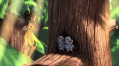 disney fairies pixie preview: hide and tink