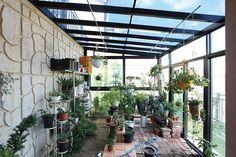 아내의 건강 회복을 위해 지은 천안 프로방스 주택 : 네이버 포스트 Plants, Case Study, Gardening, School, Log Projects, Houses, Lawn And Garden, Plant, Planets