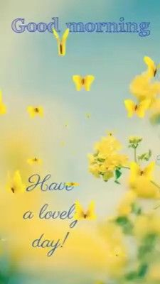 Lovely Day Quotes, Good Morning Flowers Quotes, Cute Good Morning Quotes, Good Morning Roses, Good Morning Inspirational Quotes, Good Morning Daughter, Good Morning Love You, Lovely Good Morning Images, Good Morning Picture