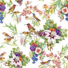 oiseau tropical: Aquarelle sauvages oiseaux exotiques sur les fleurs seamless pattern sur fond blanc. Illustration
