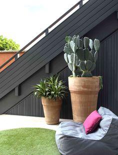 Small Garden Design, Exterior House Colors, Green Garden, Beautiful Space, Caviar, Terracotta, Coffee Shop, Planter Pots, Backyard