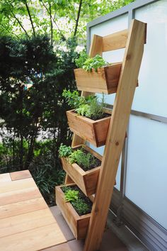 Find out how to build this vertical garden planter with our free project plants. This Urban Garden is easy to build and perfect if you live in a small space! garden Vertical Garden for Urban Living Diy Projects Plans, Backyard Projects, Outdoor Projects, Backyard Patio, Garden Projects, Backyard Landscaping, Vertical Garden Planters, Vertical Gardens, Herb Garden Planter