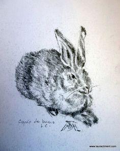 Hare. Liebre (Copy of A. Durero) Grafito Animals, Black, Alone Photography, Graphite, Blanco Y Negro, Paintings, Fotografia, Animais, Animales