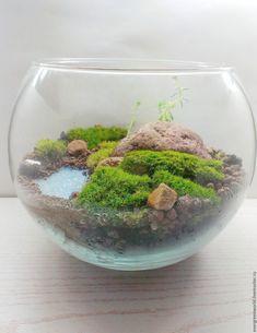 "Купить Флорариум шар ""Wild nature"" - зеленый, мох, суккулент, сад мхов, минисад, микромир"