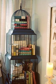 Put them in a birdcage. | 35 Things To Do With All Those Books (It'd have to be way more organized than this, but I like the idea.)