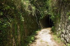Parenzana Route in Istria - old railway line for hiking/cycling
