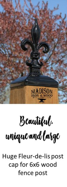 Post caps that are beautiful and make an impression. This fleur-de-lis post cap is both beautiful and large. If you want a beautiful post cap for your fence post, this is it! Wood Fence Post, Fence Post Caps, Powder Paint, Mailbox Post, Flagstone Patio, Entrance Gates, Building A Deck, Wrought Iron, Helpful Hints
