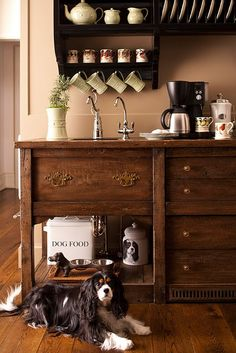 An antique wood cabinet / cupboard serves as a coffee bar and pet feeding station. Smart and beautiful! I love that they fitted it with a sink.