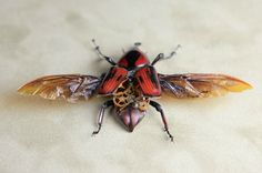 Steampunk insects by Lindsey Bessanson