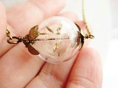 Hey, I found this really awesome Etsy listing at https://www.etsy.com/listing/112996911/dandelion-seed-glass-orb-terrarium