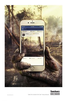 Imagine, por um segundo, que os animais pudessem usar celulares e as redes sociais para compartilhar as imagens do mundo à sua volta.
