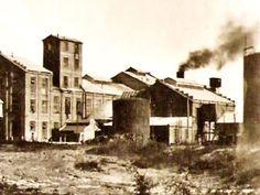 Vuelve #latrochita al Ingenio Azucarero de General Conesa