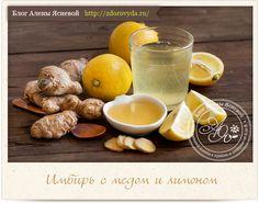 Оздоравливающая смесь из имбиря, меда и лимона — подробный рецепт