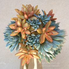 Succulent Gift Bouquets, Photos, Ideas and How-To