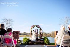gorgeous venue, by the water, waterside wedding, arbor, wedding ceremony, outdoor wedding, wedding photographer :: Catherine + Wil's Wedding at Mossy Pond in Patterson, GA :: with Shain + Maggie