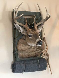 Pack Mount Whitetail Mounts In 2019 Deer Mounts