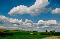 open fields under fluffy white clouds