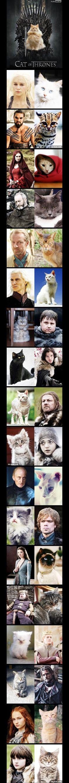 [PHOTOS] A quoi ressemblerait Game of Thrones avec des chats ?