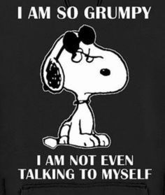 Funny Jokes To Make You LOL 👈🏻🍺😎😁👍 Hilarious Jokes & Humor - Clean Jokes, Dirty Jokes, Dad jokes & more. Snoopy Love, Charlie Brown And Snoopy, Snoopy And Woodstock, Happy Snoopy, Snoopy Hug, Charlie Brown Quotes, Peanuts Quotes, Snoopy Quotes, 9gag Funny