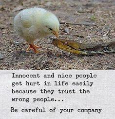 Be careful of your company..