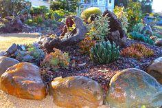 Gardens By Jenise