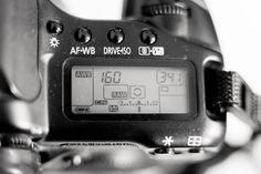 Understanding ISO for beginners...it also has great links for understanding aperture and shutter speed! :)